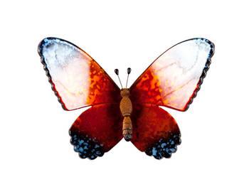 Biev - Şeffaf Kelebek Büyük Boy - Turuncu